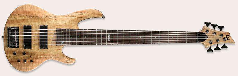 guitare 6 cordes