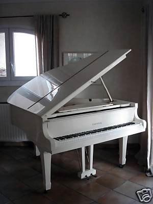 Piano choiseul quart de queue blanc petite annonce trocmusic for Piano blanc a queue