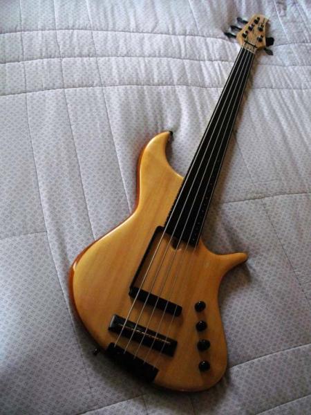 Photo : Basse Fretless 5 c Noguera YC semi acoustique