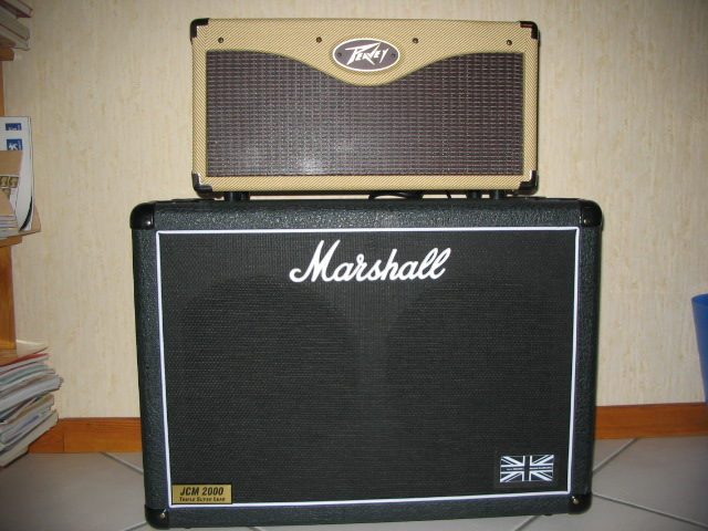 Photo : Baffle  Marshall  TSLC 212 JVMC