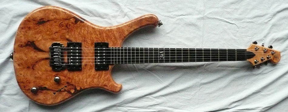 Photo annonce Guitare        WSL The beast Micros EMG HZ