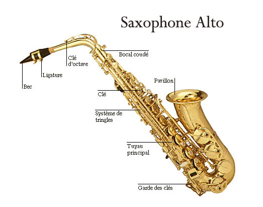 cours de saxophone tous ages petite annonce trocmusic. Black Bedroom Furniture Sets. Home Design Ideas