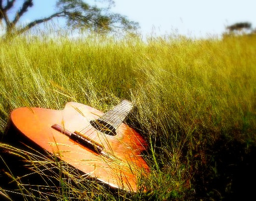 Stage de Guitare