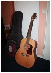 guitare folk walden d570 natura petite annonce trocmusic. Black Bedroom Furniture Sets. Home Design Ideas
