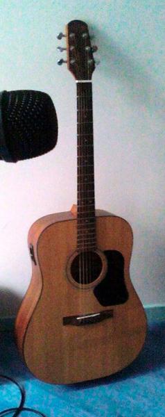 guitare folk walden d310 tk petite annonce trocmusic. Black Bedroom Furniture Sets. Home Design Ideas