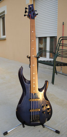 Photo annonce Basse 5 cordes fretless made in Quebec