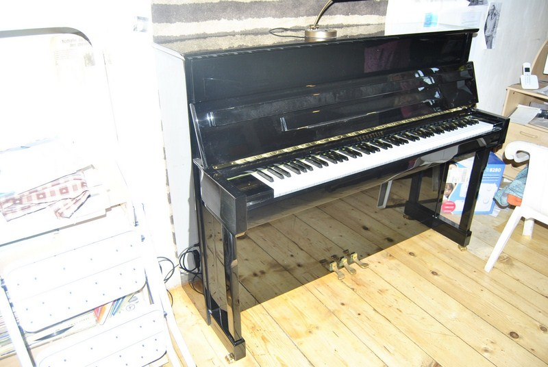 Photo annonce Piano  Bechstein  116